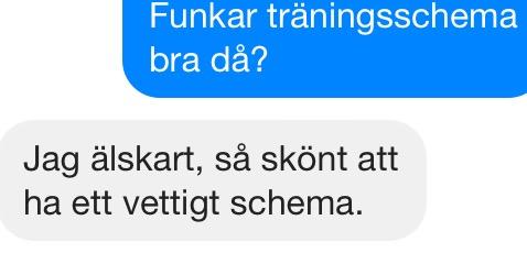SMSbild 17